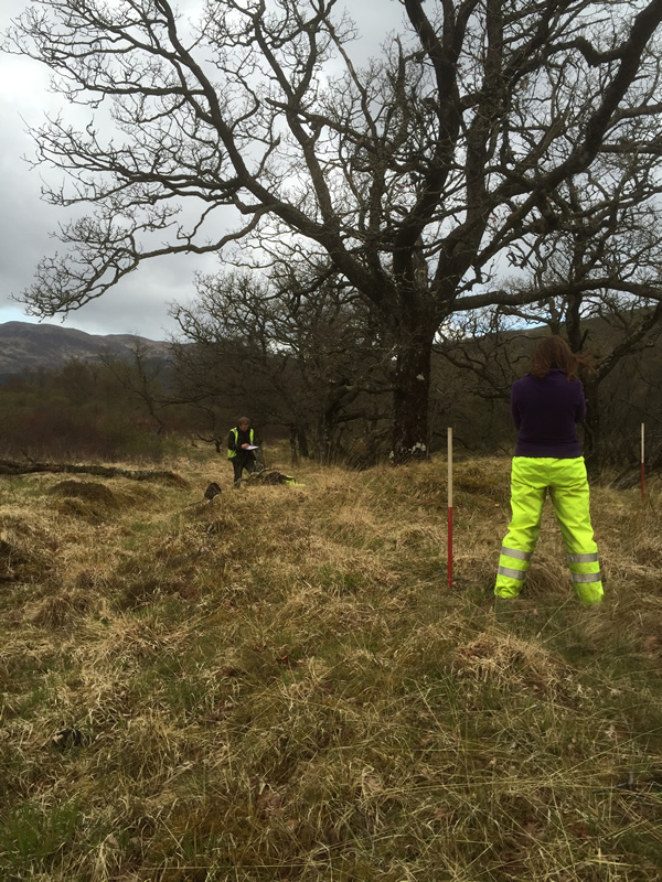 Training survey of a bloomery mound on the Tamheich Burn, Cowal
