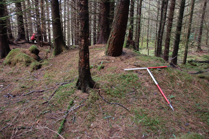 Recording of Whistlefield Road bloomery mound, Loch Eck