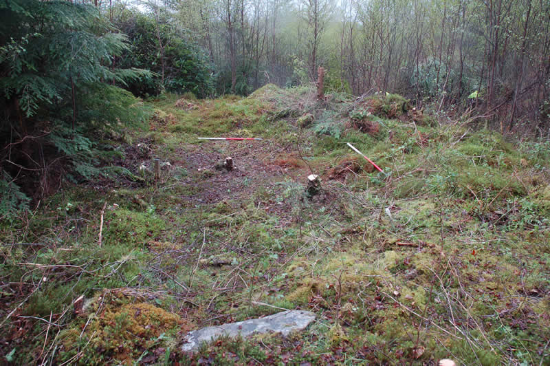 Recording of extensive horseshoe bloomery mound at Allt na Ceardaich I, Loch Eck
